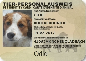 Personalausweis Odie